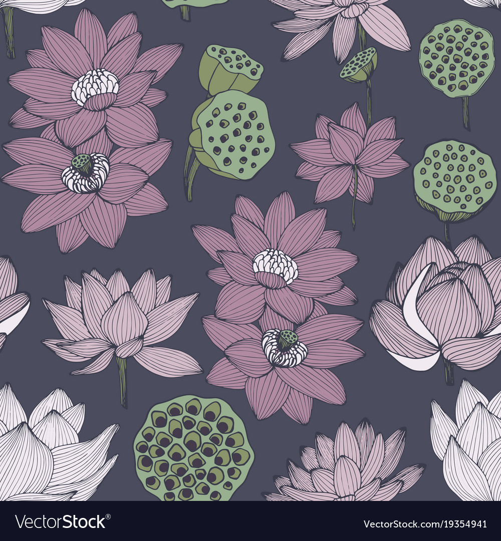Water lily seamless pattern for design vector image