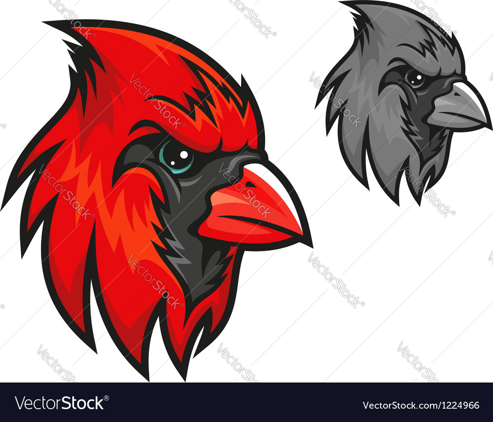 Red cardinal bird in cartoon style vector image