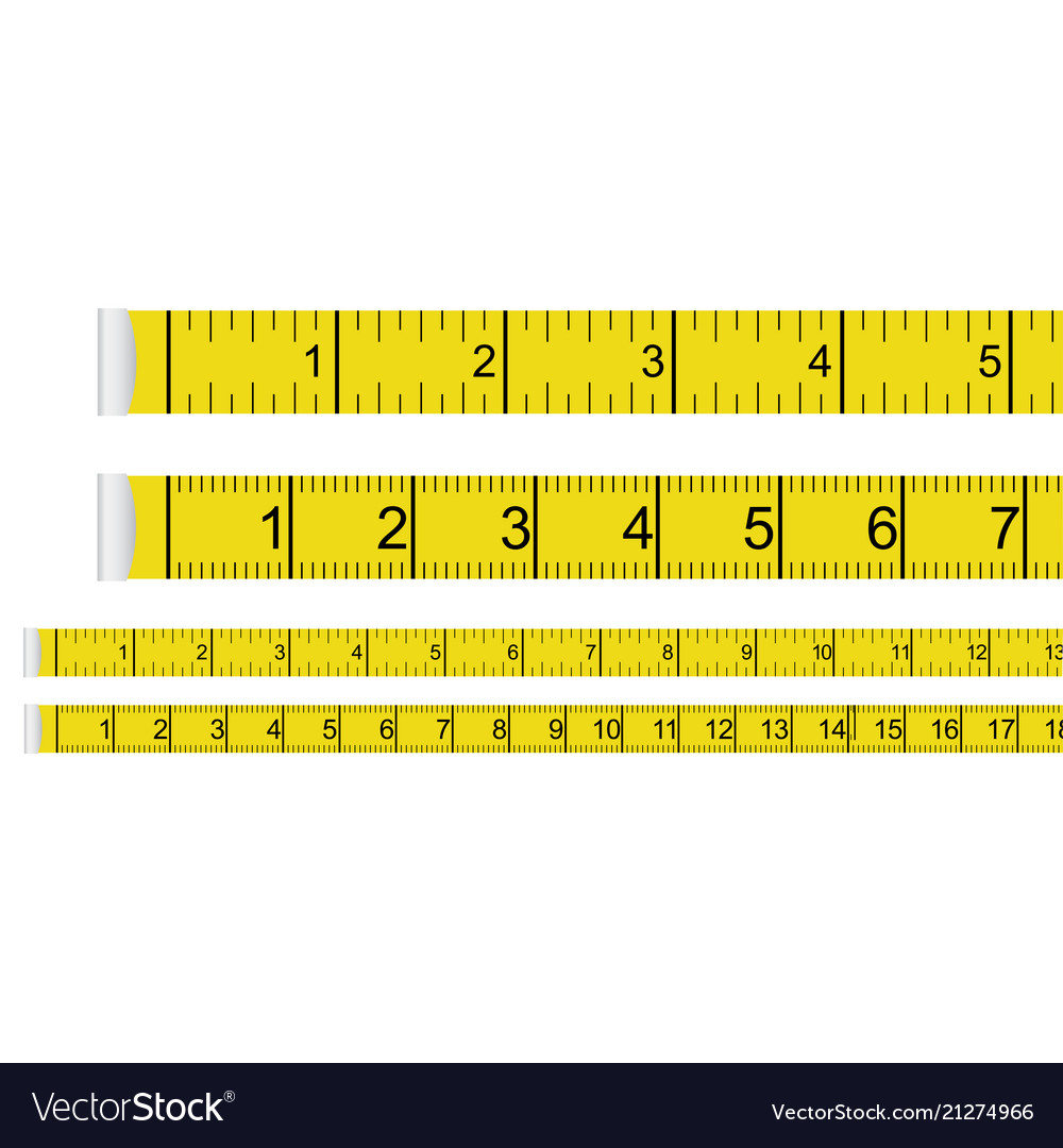 Tape Measure Presets Centimeter With Inches And Vector Image