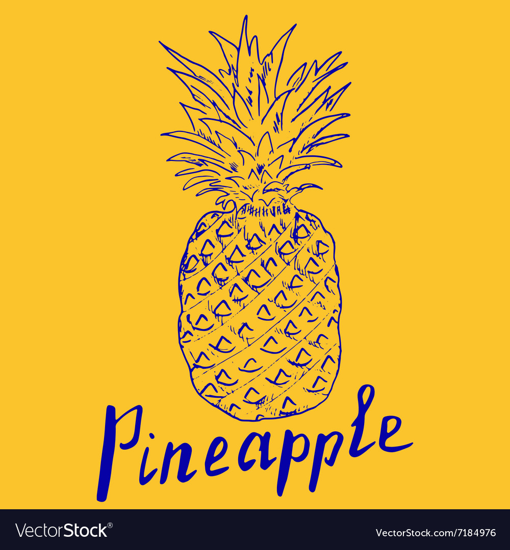 Pineapple Hand drawn sketch grunge outline popart vector image