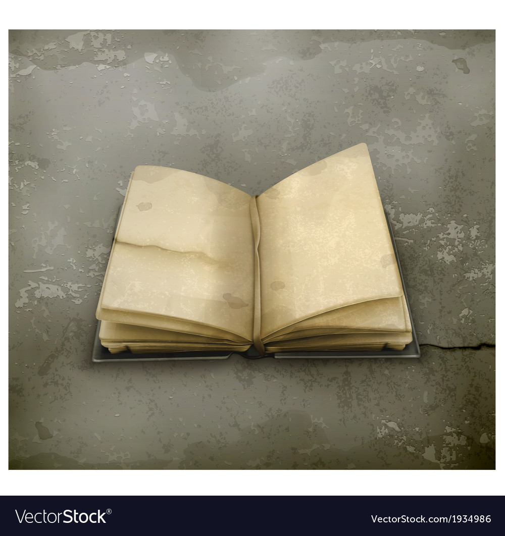 Open book old style vector image