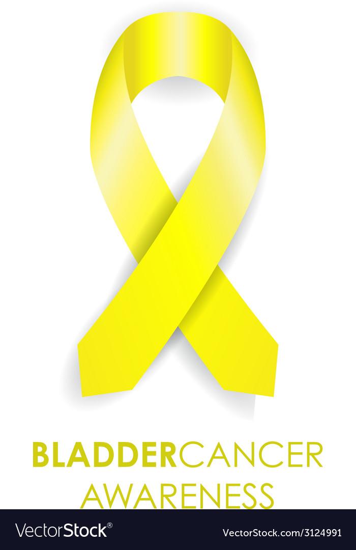Bladder cancer ribbon vector image