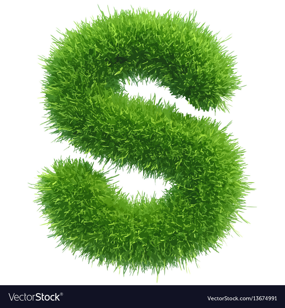 Small grass letter s on white background vector image