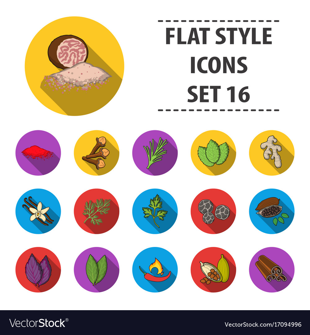 Herb and spices set icons in flat style big