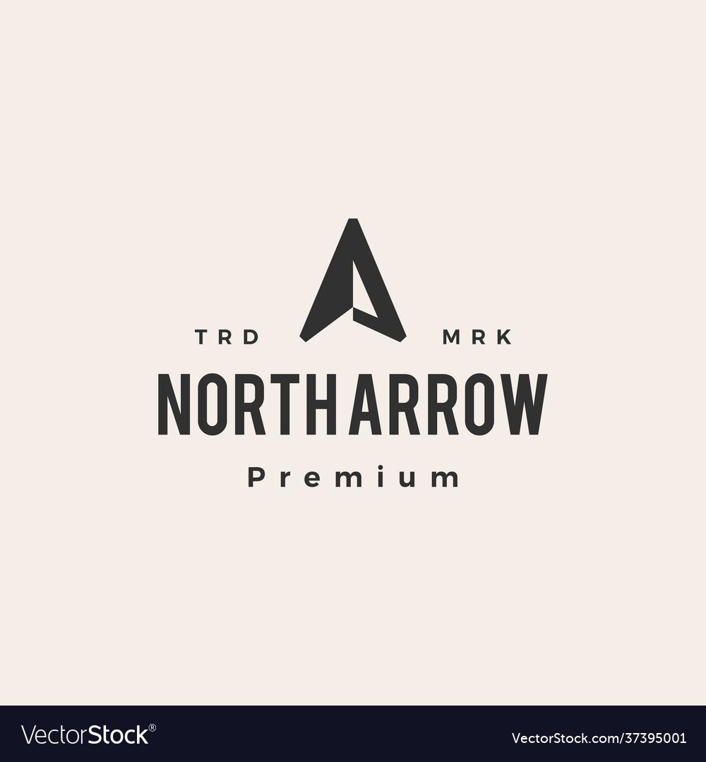 North arrow compass hipster vintage logo icon