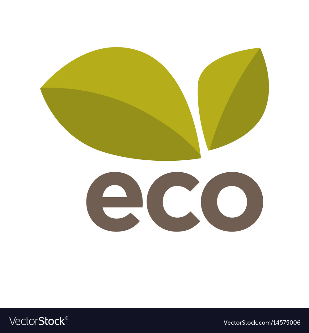 Eco logo design with green leaves isolated