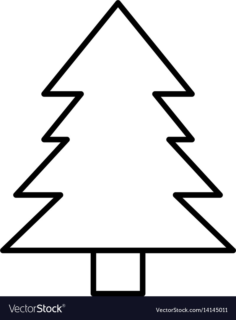 Pine tree natural outline vector image