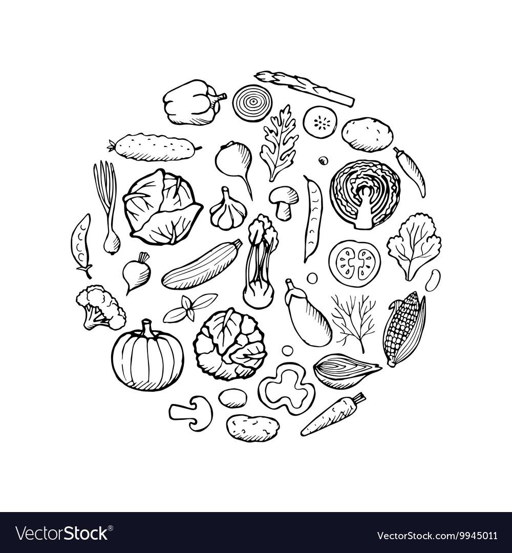 Vegetable Doodle Set