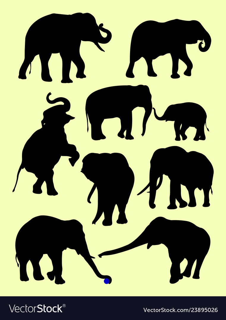 Cute elephants animal silhouette in different pose