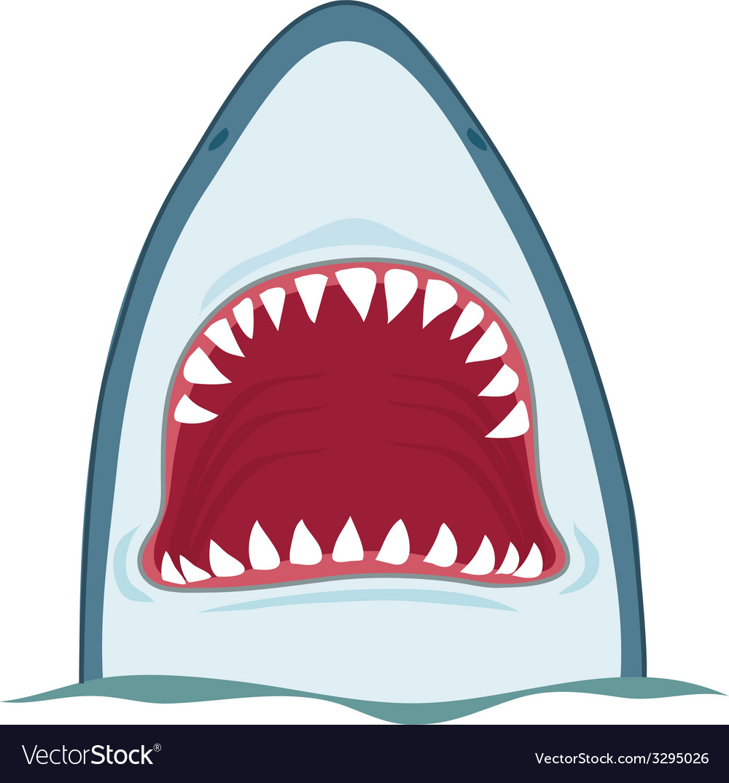 shark jaws royalty free vector image vectorstock