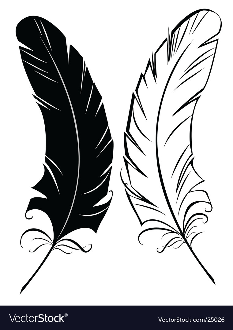 silhouette black and white feather royalty free vector image rh vectorstock com feather vector pattern feather vector images