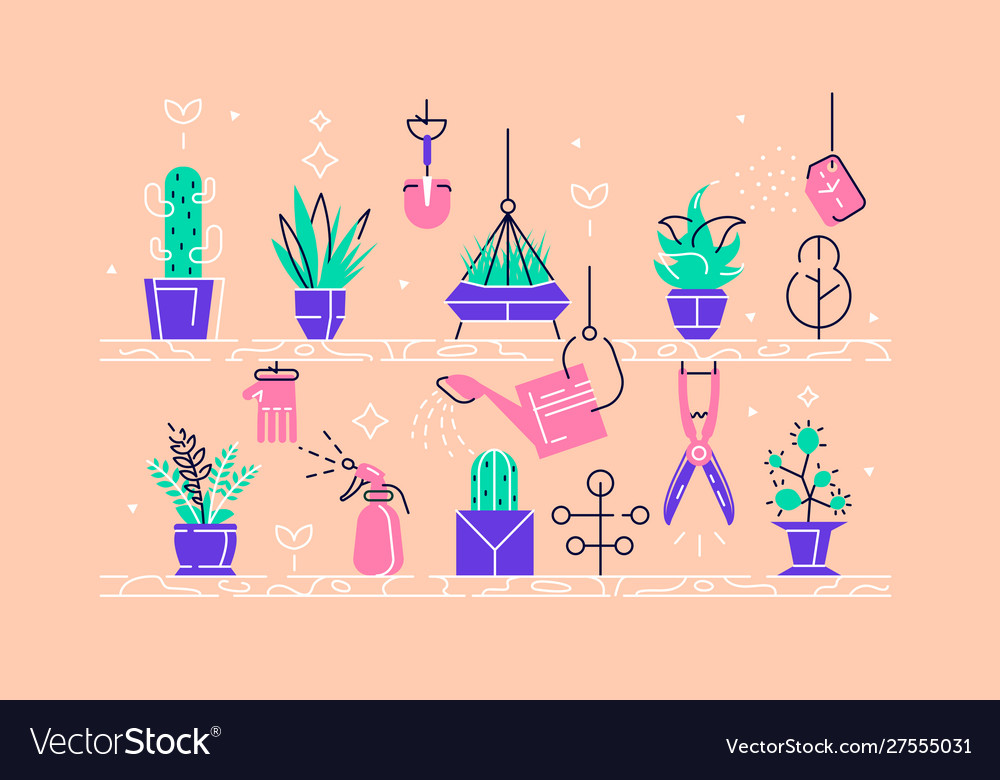 Beautiful home plants set vector