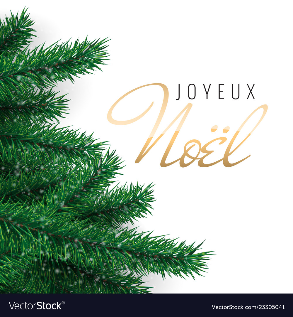 French text joyeux noel merry christmas greeting