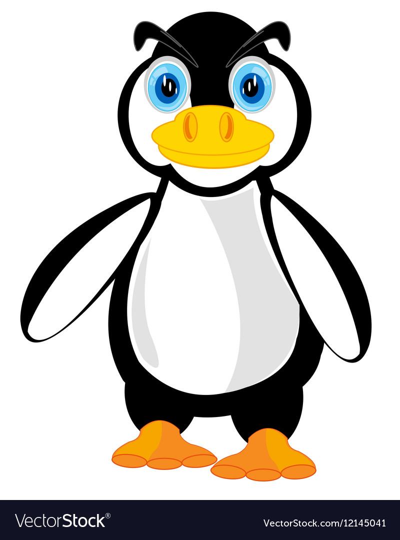 Wildlife penguin on white