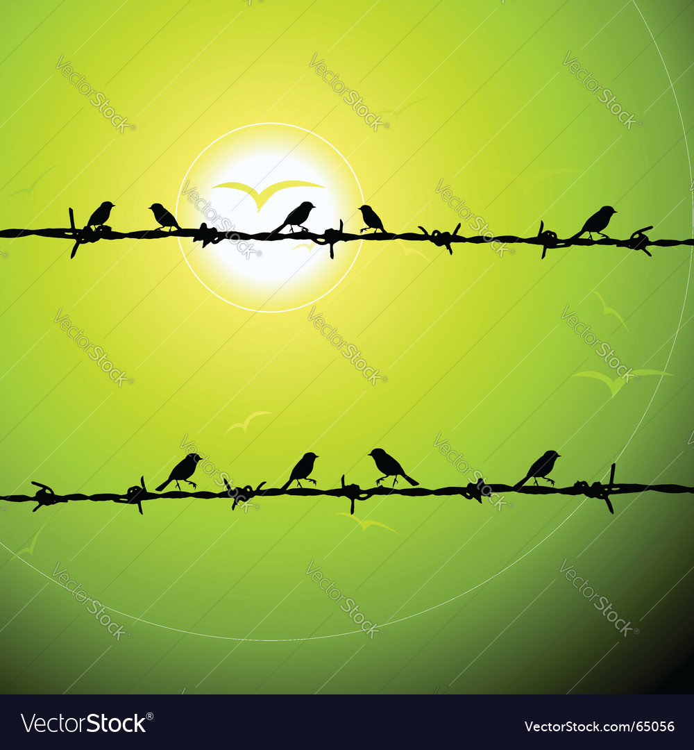 Birds on wire silhouette