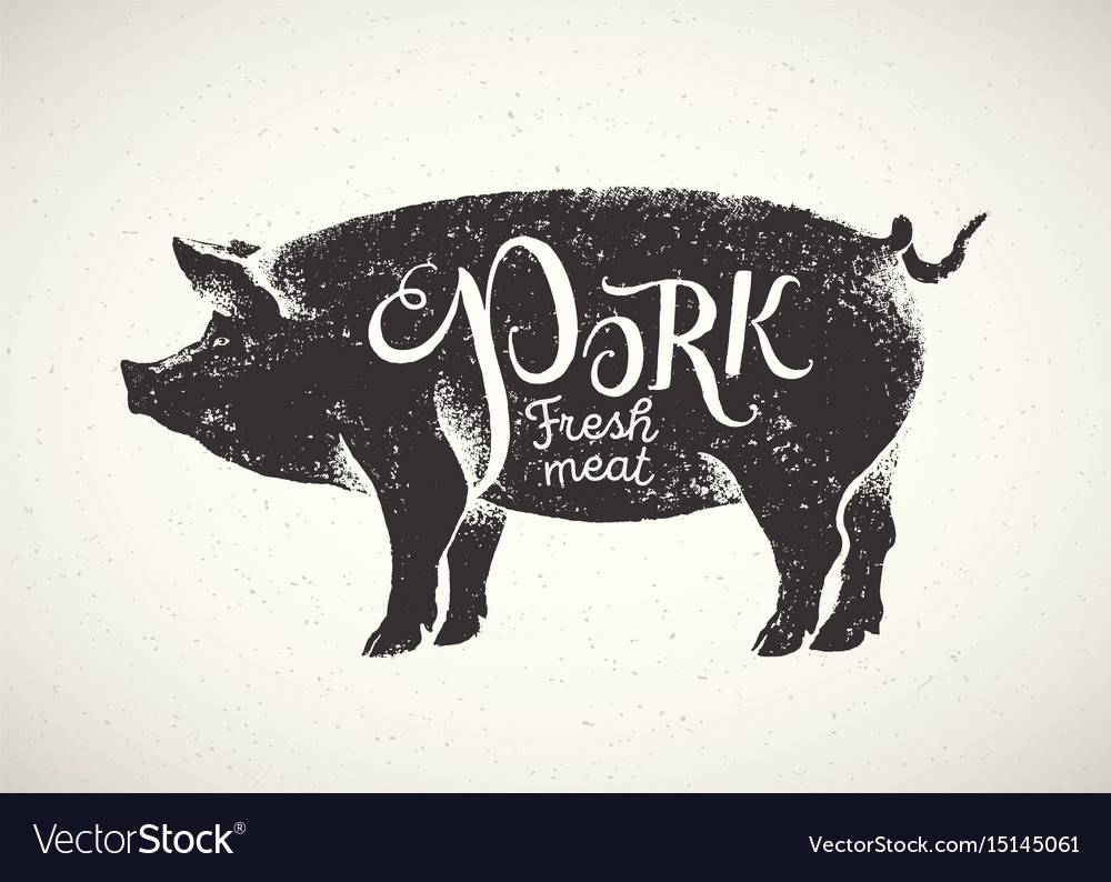 Pig and inscription 02 vector image