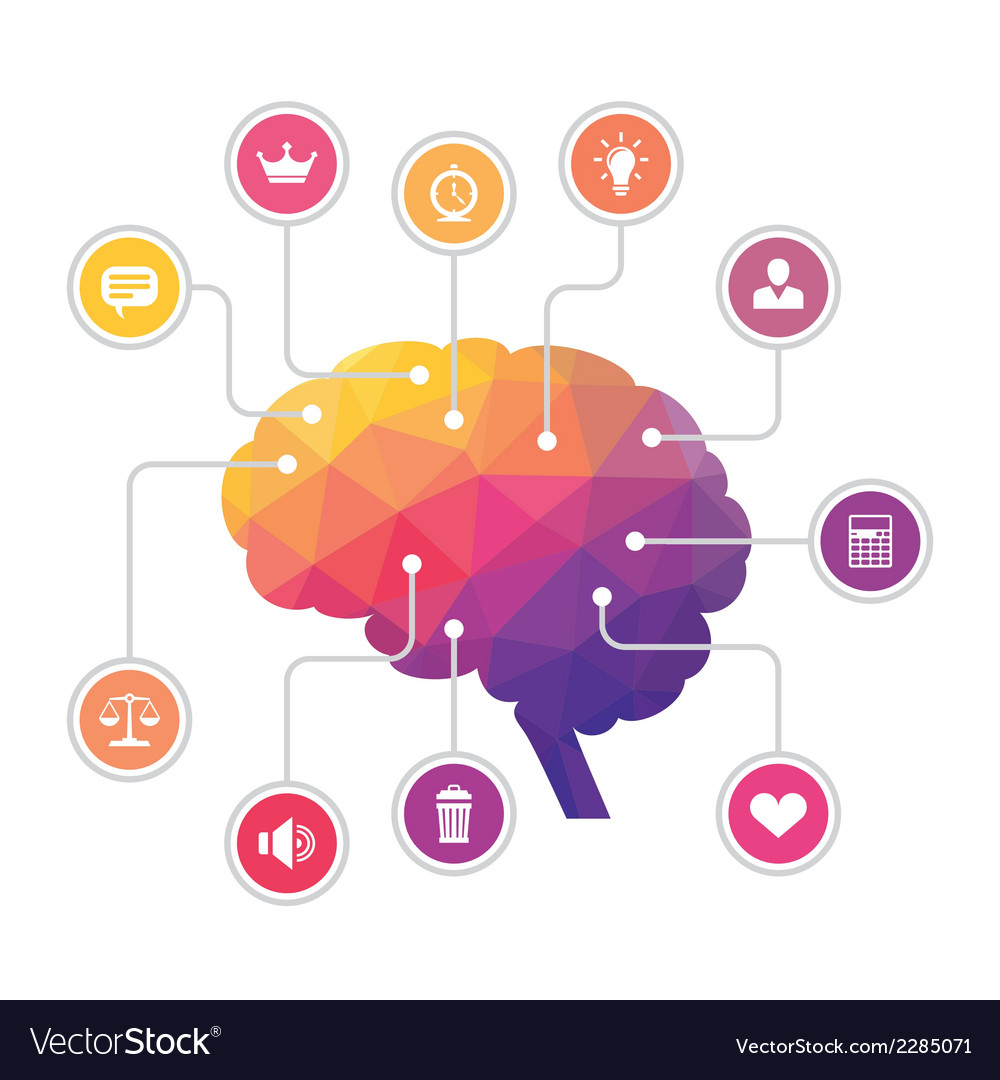 Human Brain - Colored Polygon Infographic vector image