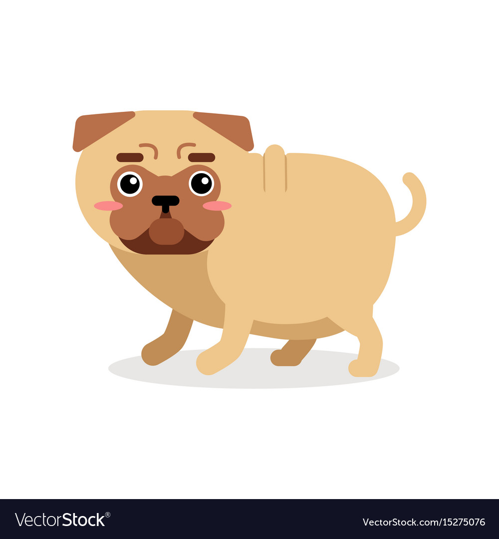 Funny cartoon pug dog character