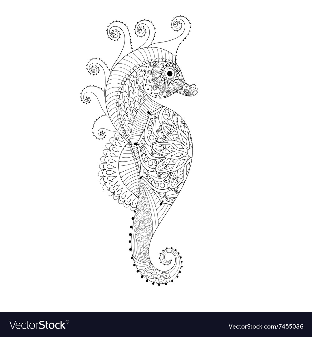 Sea Horse Coloring Page Vector Images 65