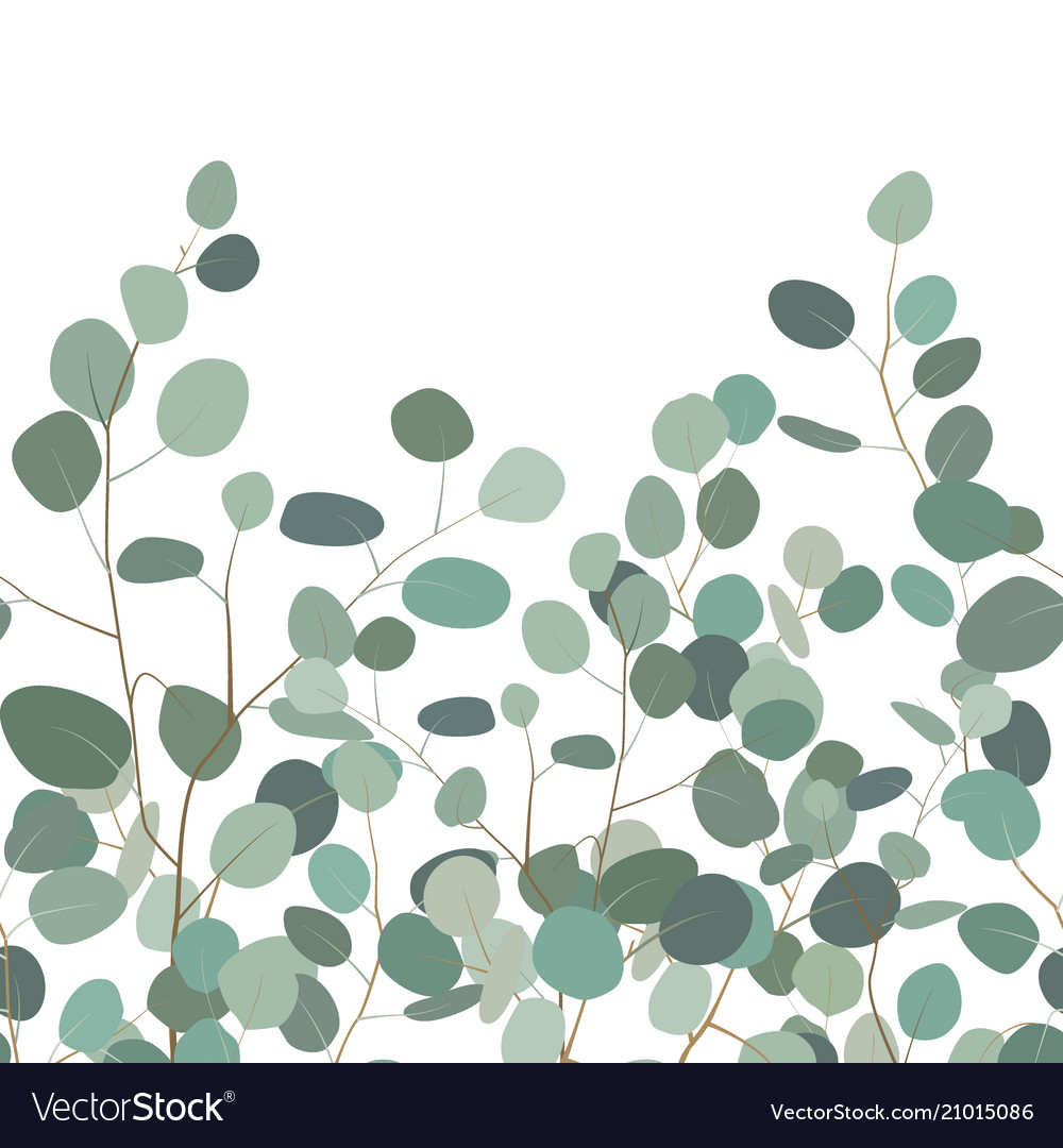 Seamless pattern with eucalyptus hand painted