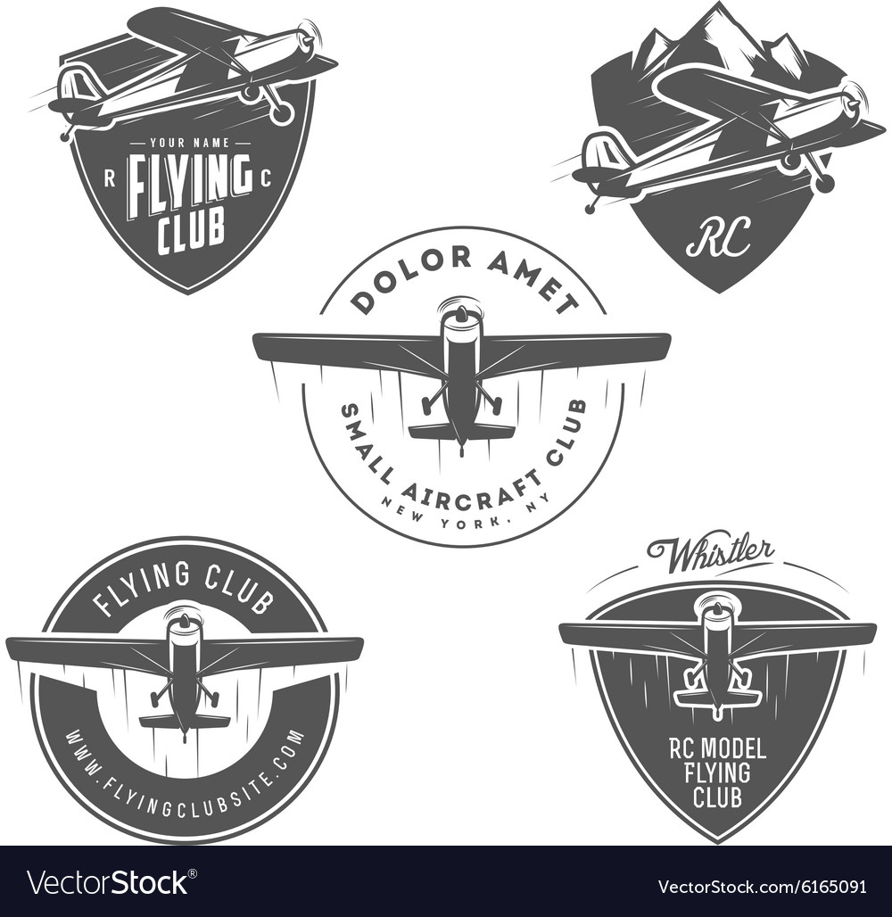 Light and RC airplane design elements vector image