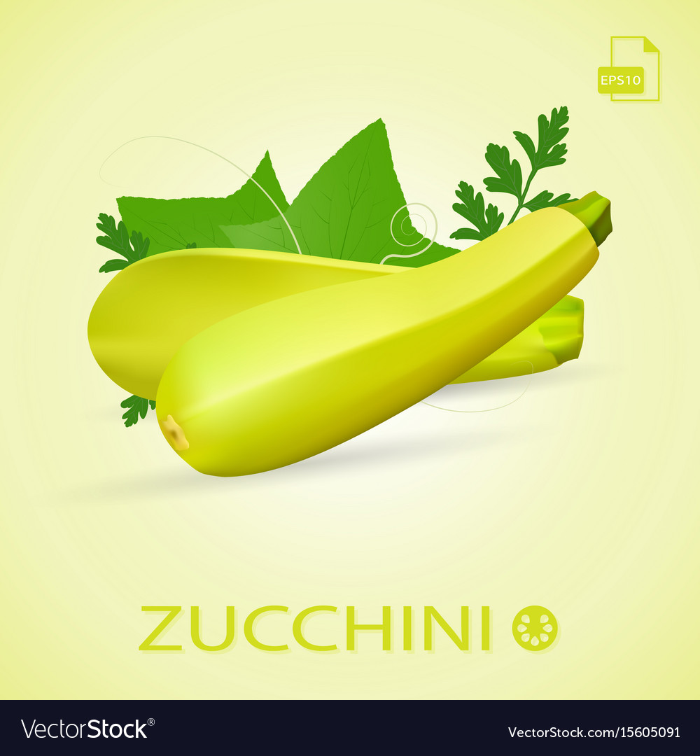 Set of fresh ripe zucchini with leaves isolated on