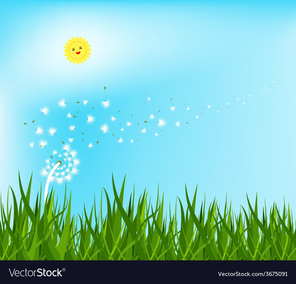 94c3caaf295d1 Spring background with white dandelions Royalty Free Vector