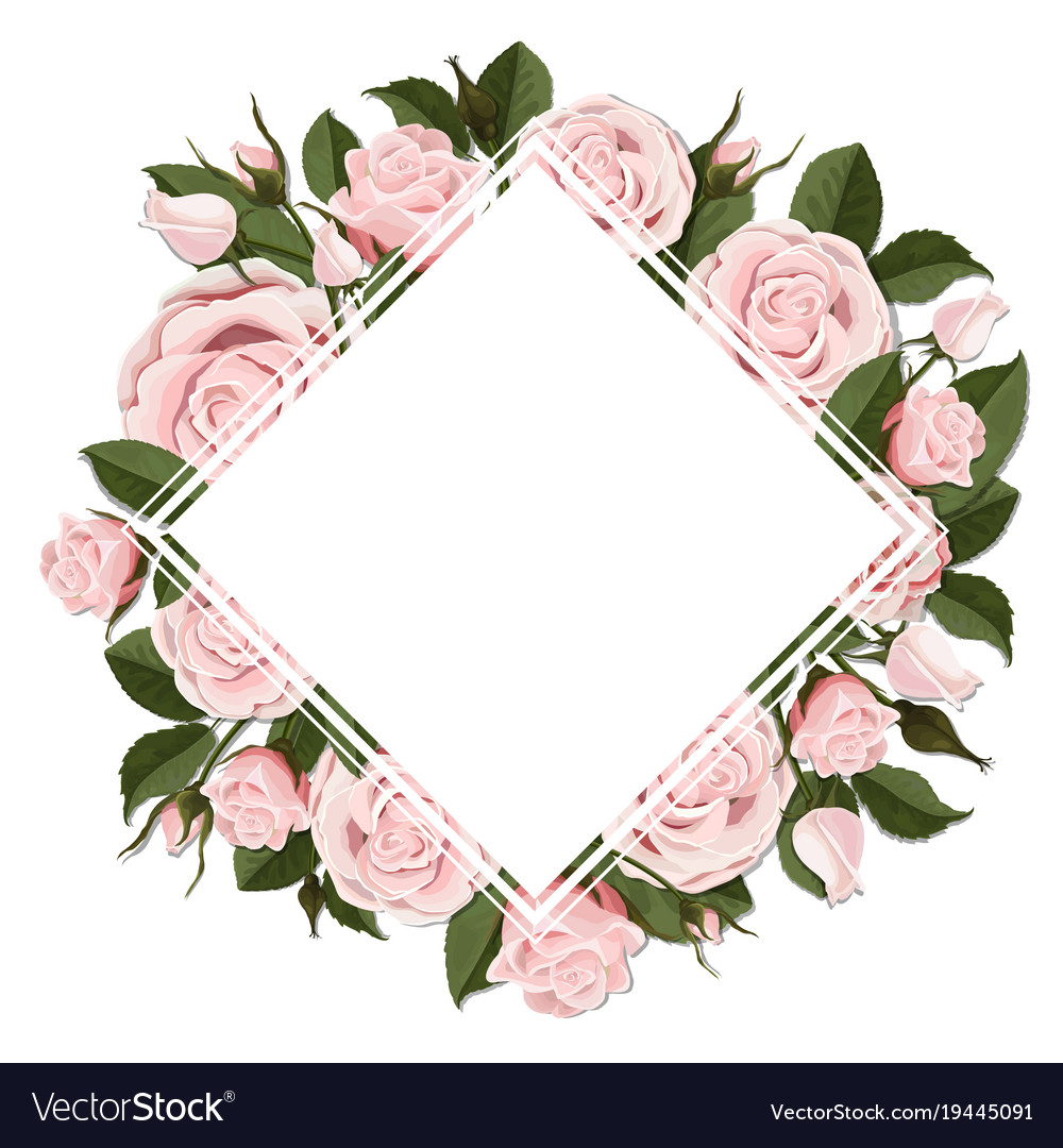 Square greeting card on pink rose flowers vector image