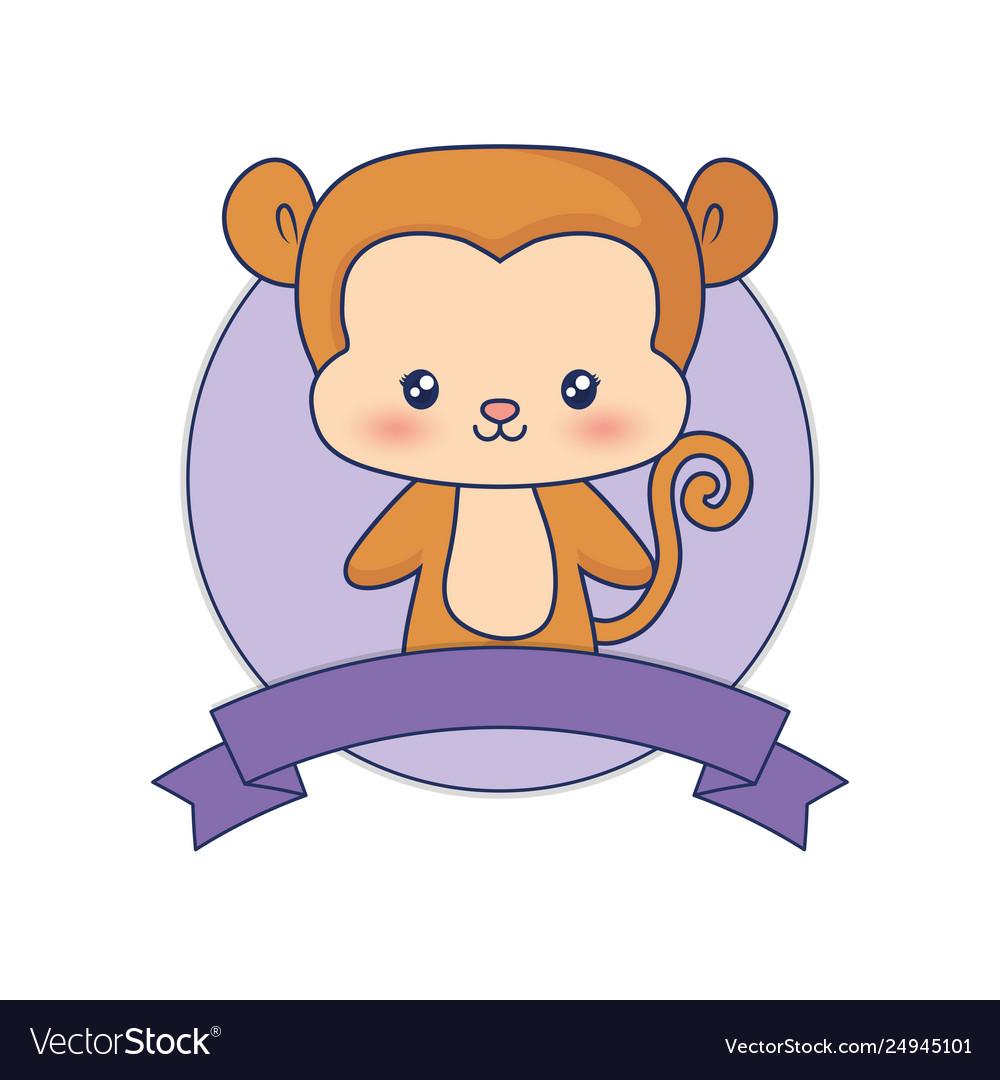 Cute monkey animal baby