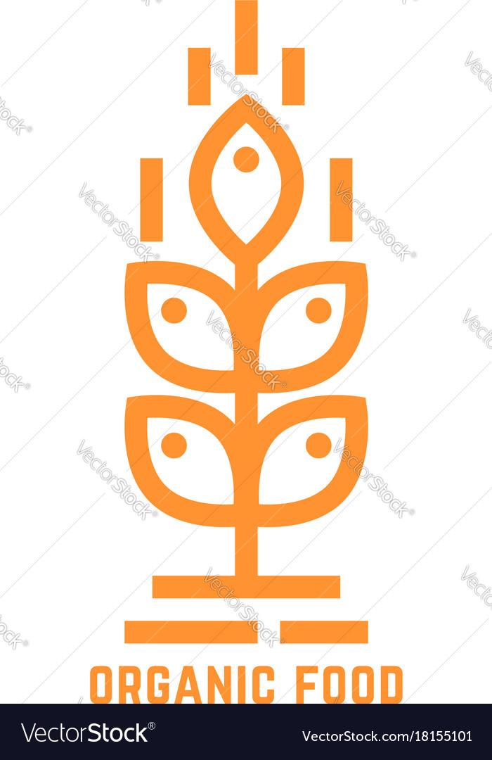 Orange simple organic food logo vector image