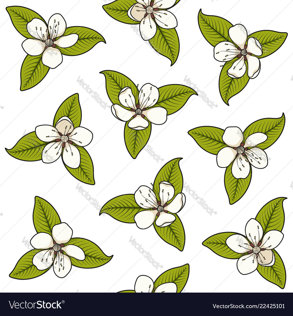 Seamless pattern with white spring flowers