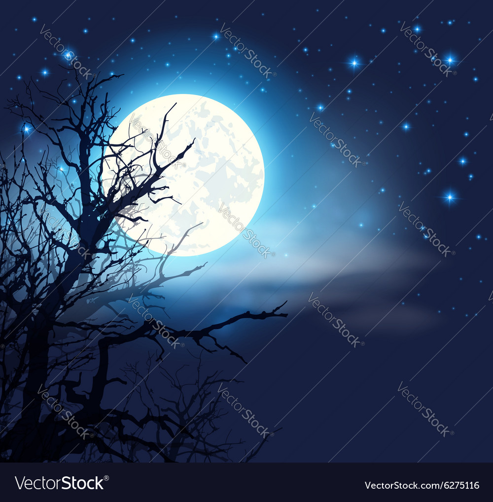 Night sky with a full moon and tree