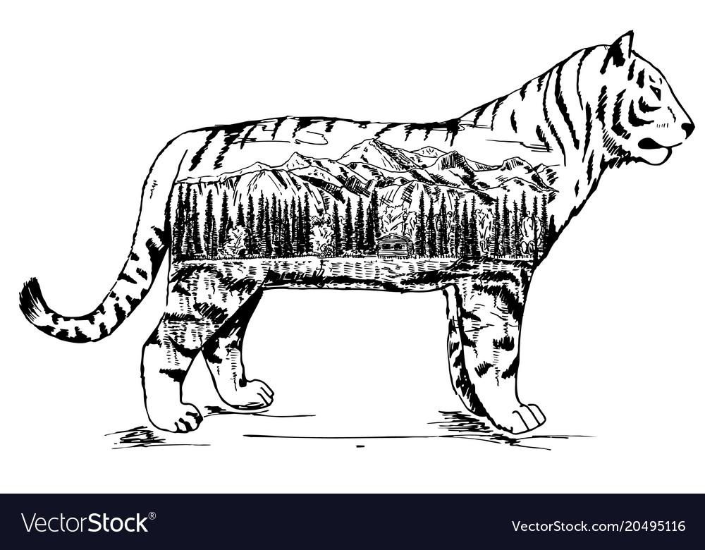 Stylized decorative tiger ink hand drawn