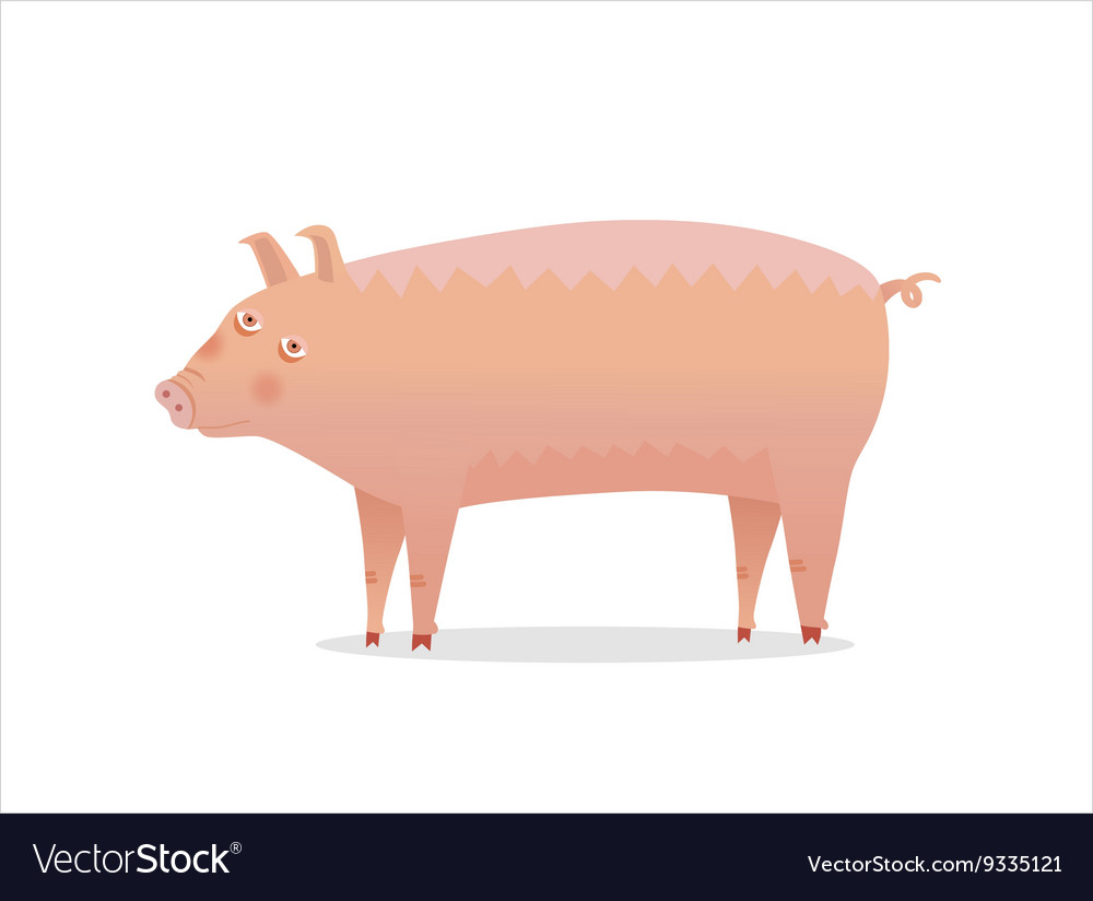 Piglet Dodo collection vector image