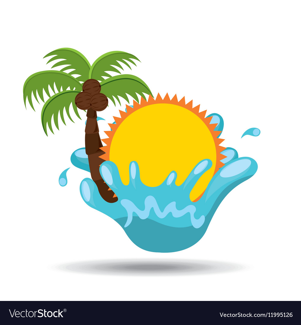 Sun water splash palm summer vacation vector image