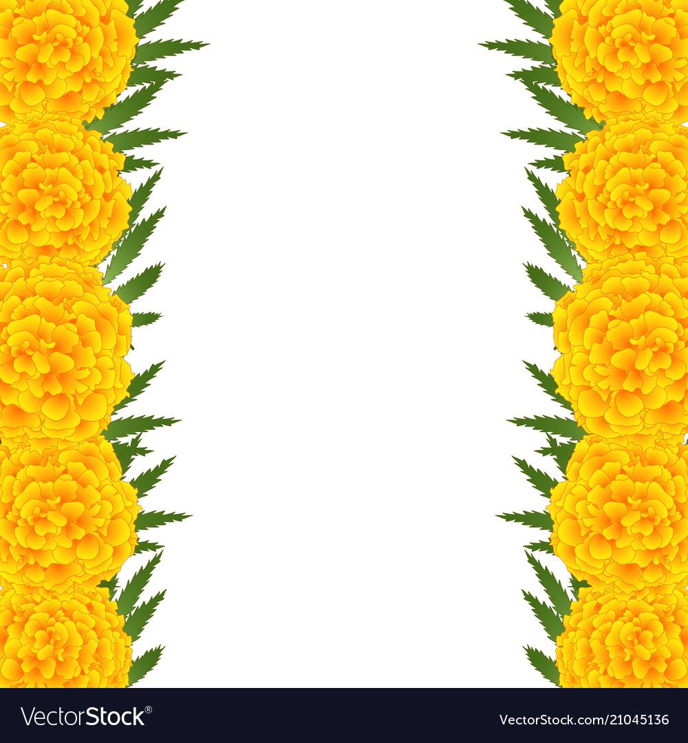 Marigold flower tagetes border royalty free vector image marigold flower tagetes border vector image mightylinksfo