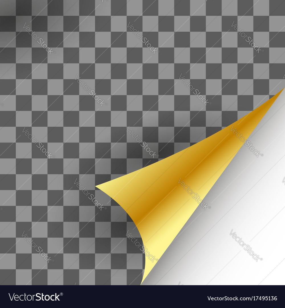 Paper gold page curl vector image