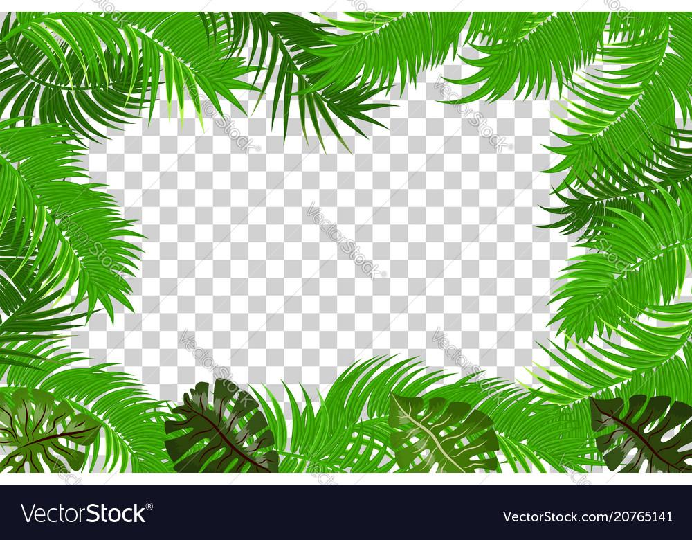 Summer jungle palm leaf frame