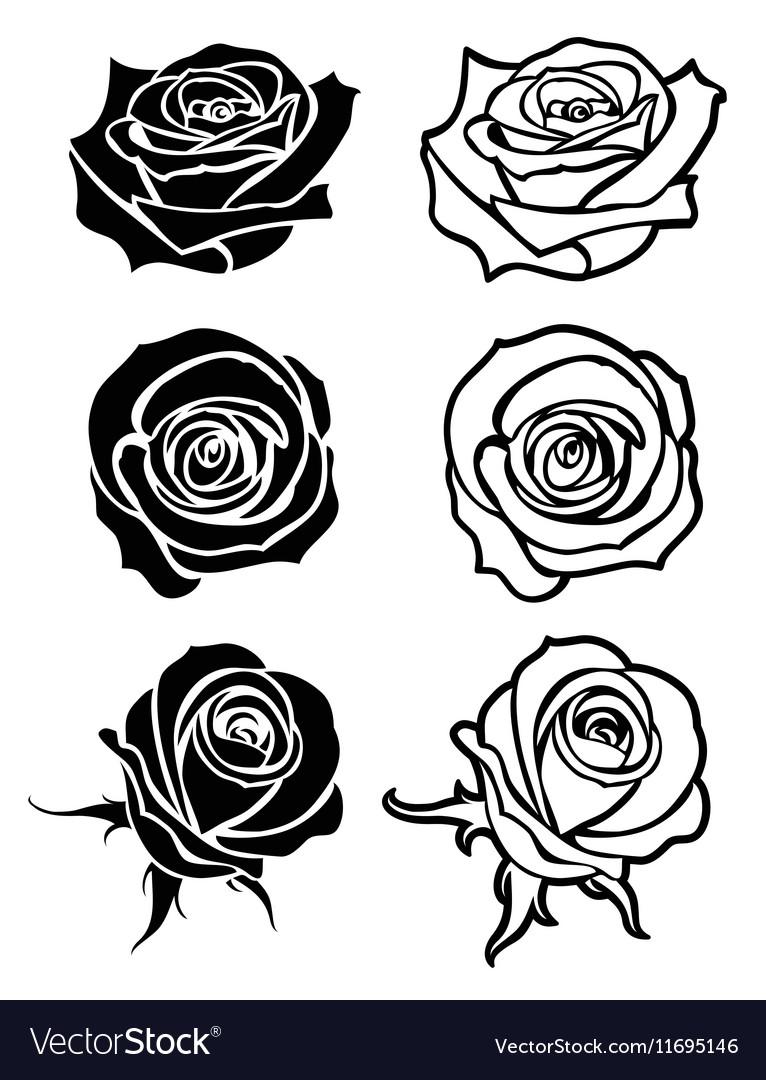Close up rose tattoo logos floral vector image