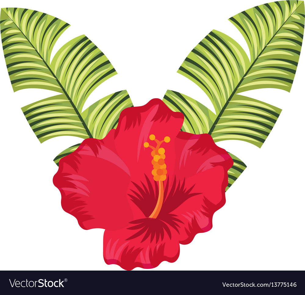 Exotic And Tropical Flower Icon Royalty Free Vector Image