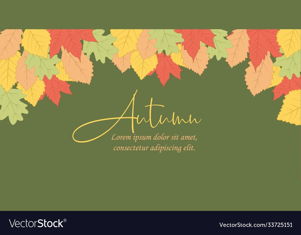 Autumn leaf in colors