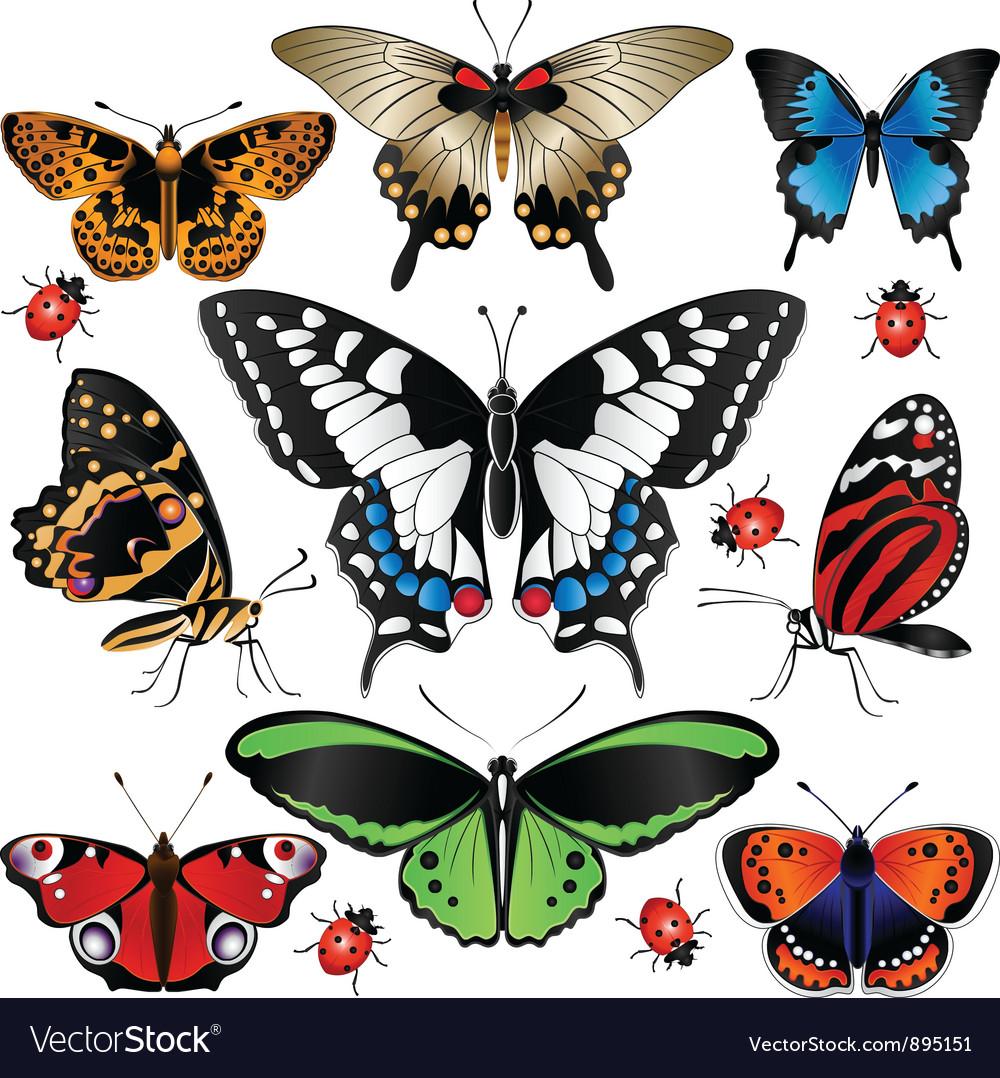 Butterflies set small