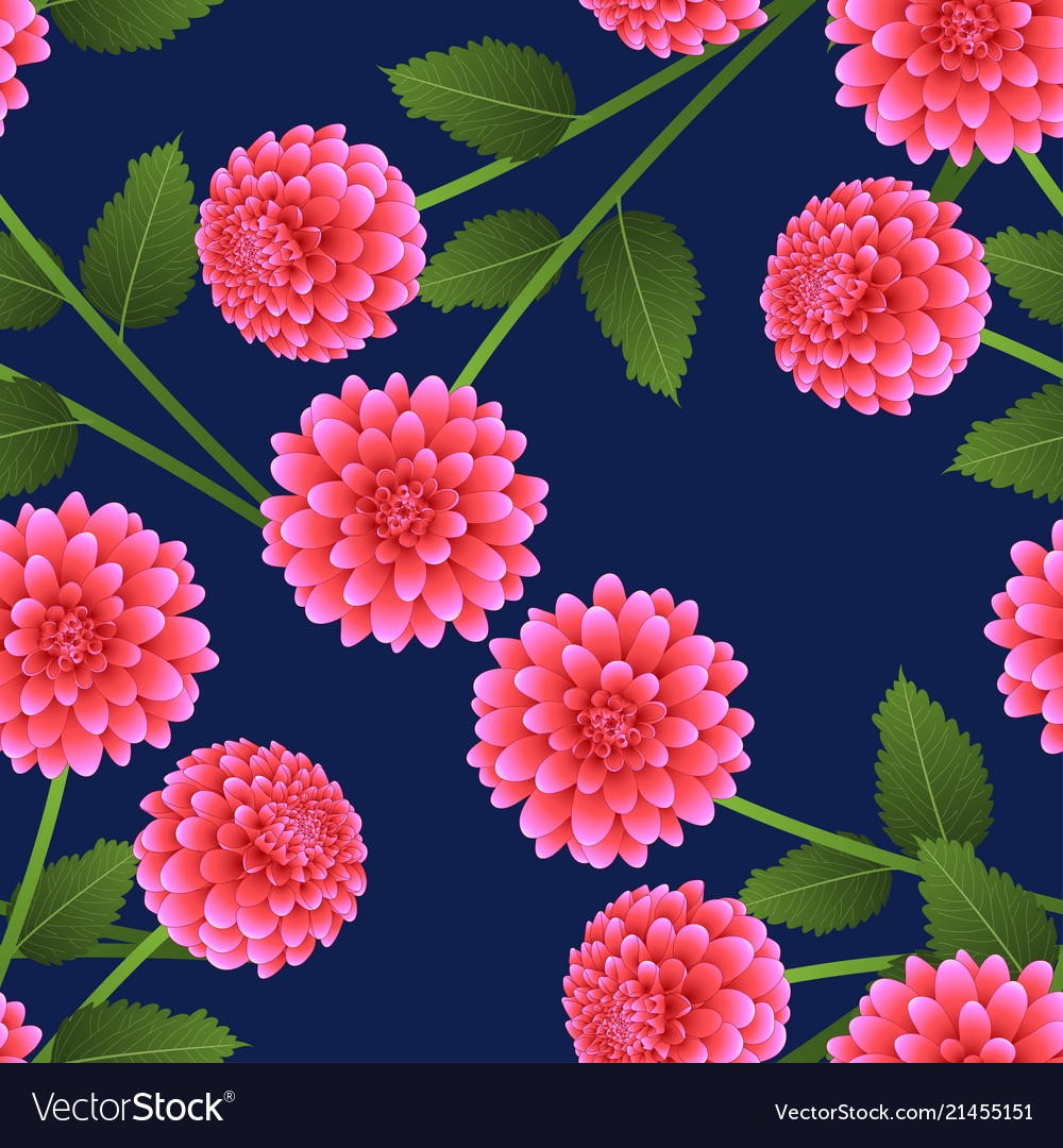 Pink Dahlia On Navy Blue Background Royalty Free Vector
