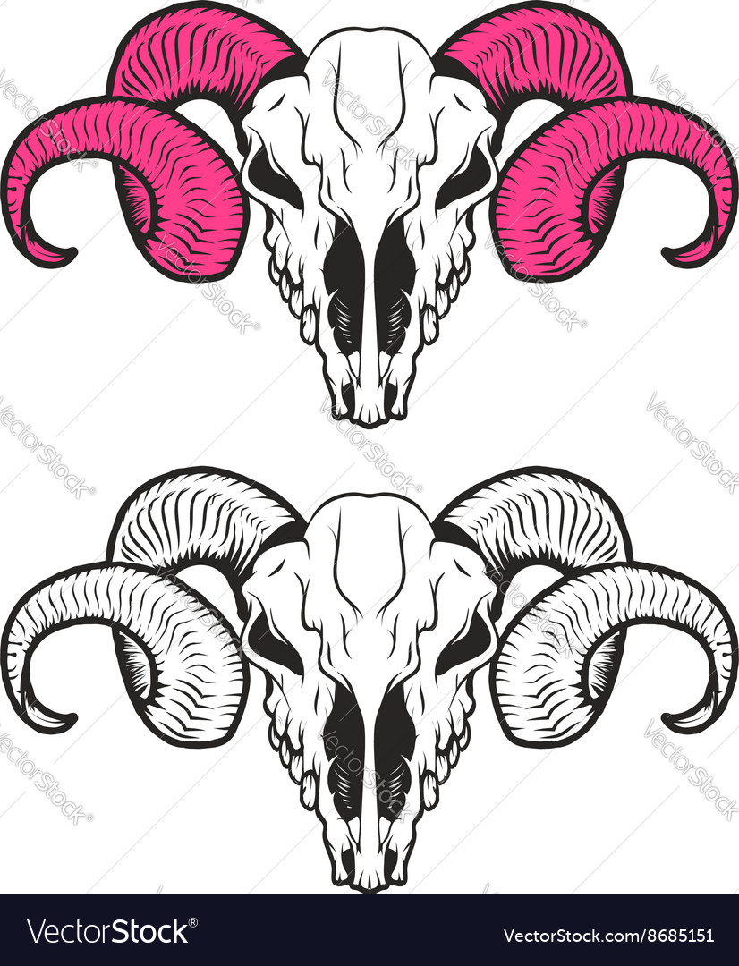 Set of ram skulls Ram skull with pink horns vector image