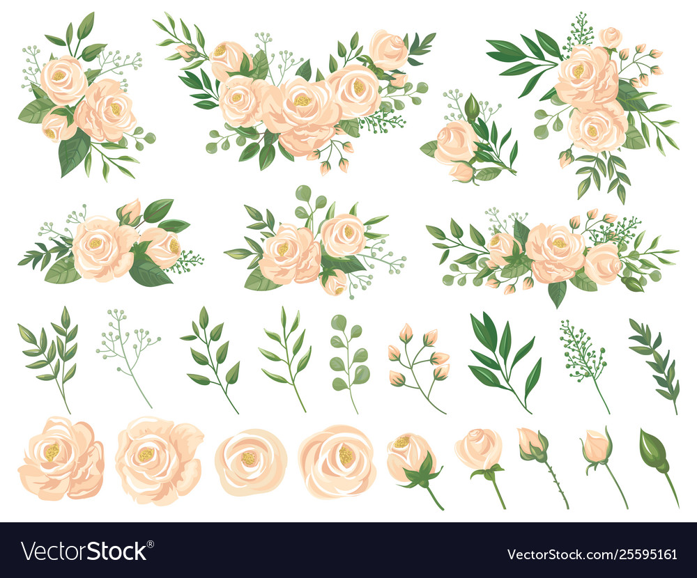 Floral bouquet rose flowers gardening roses