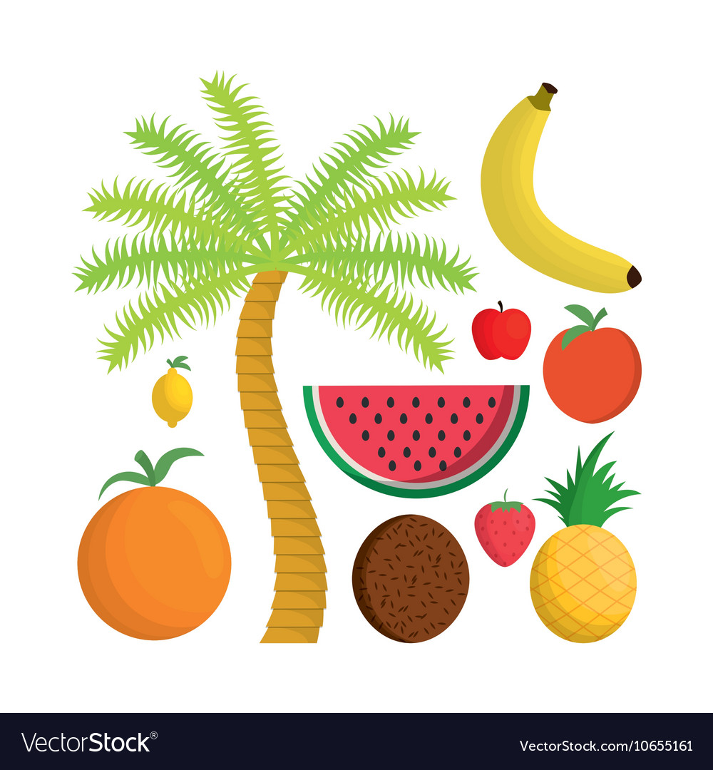 Isolated Fruits and summer concept