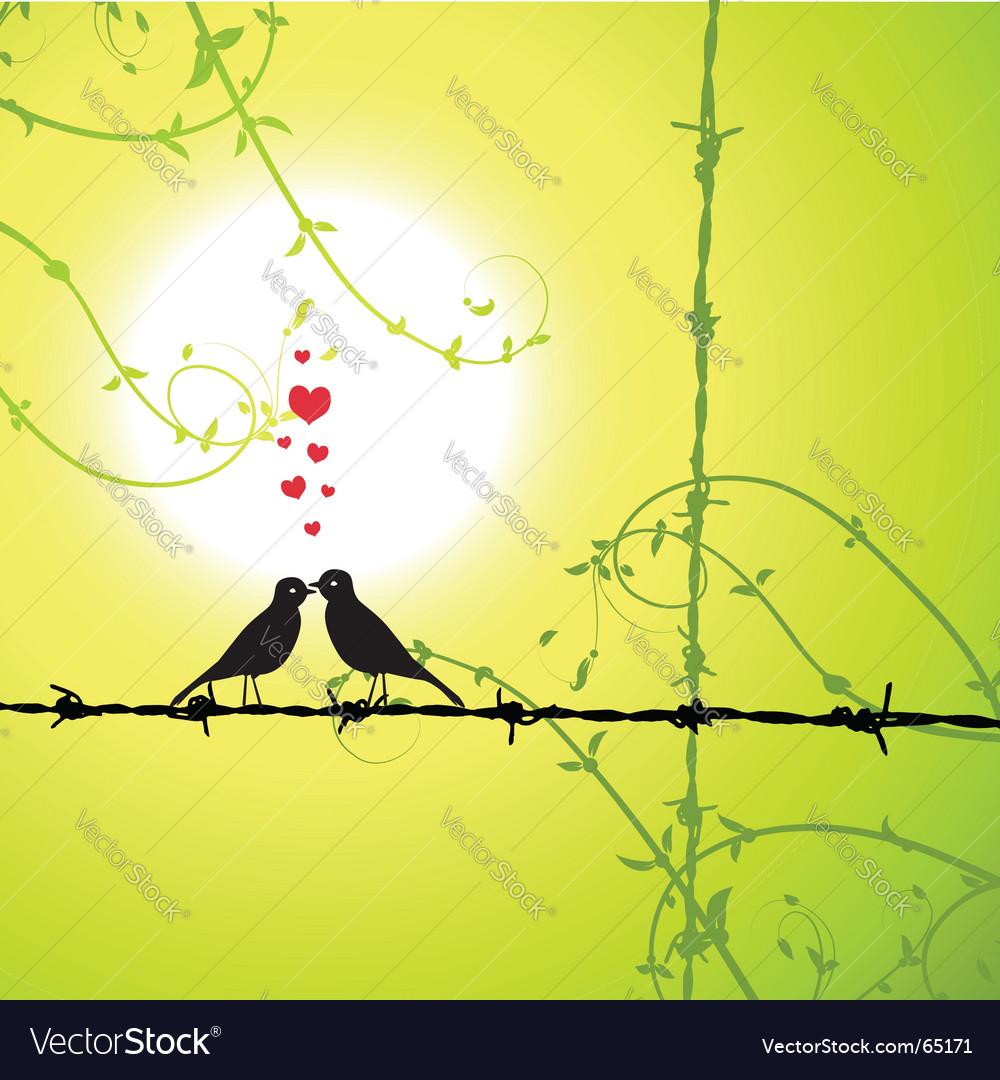 love birds kissing wallpaper. wallpapers of love birds.