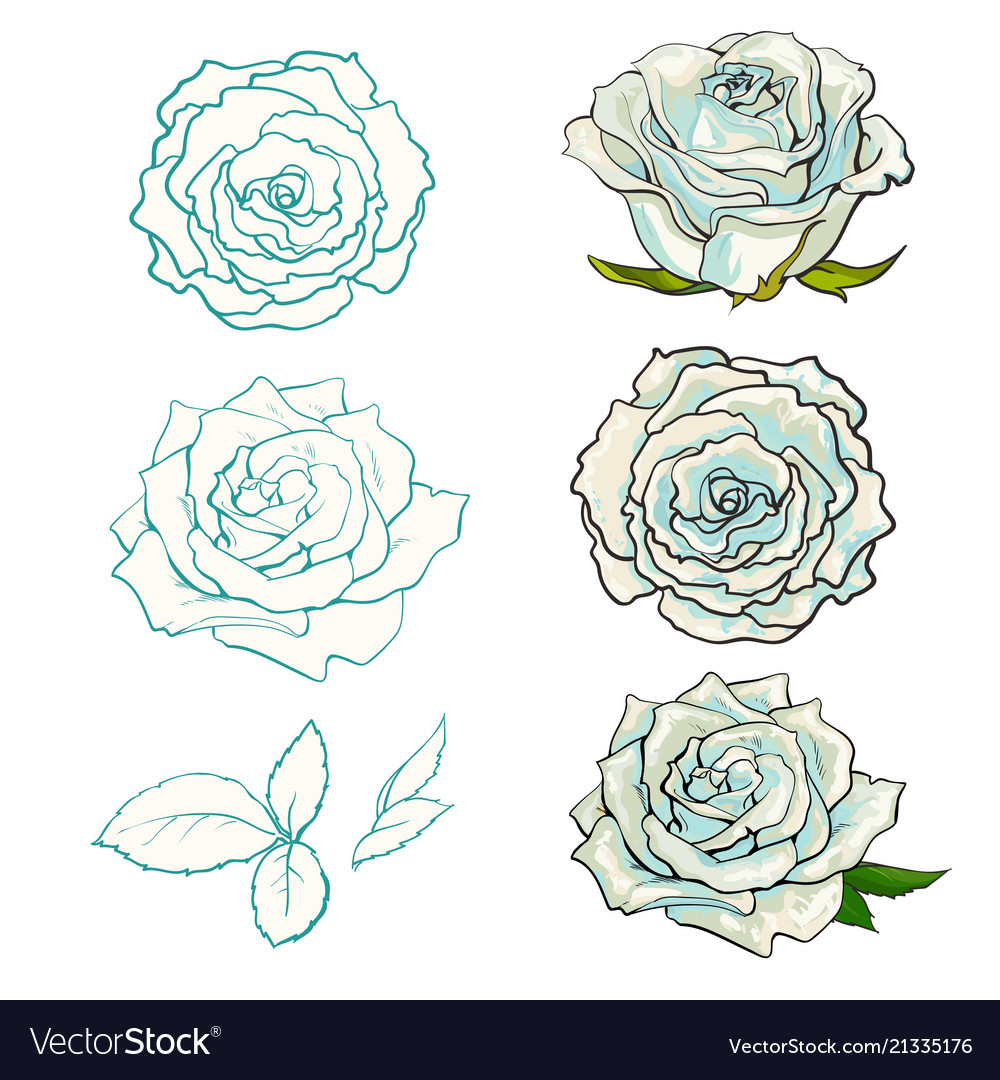 Rose buds set with summertime flowers in light