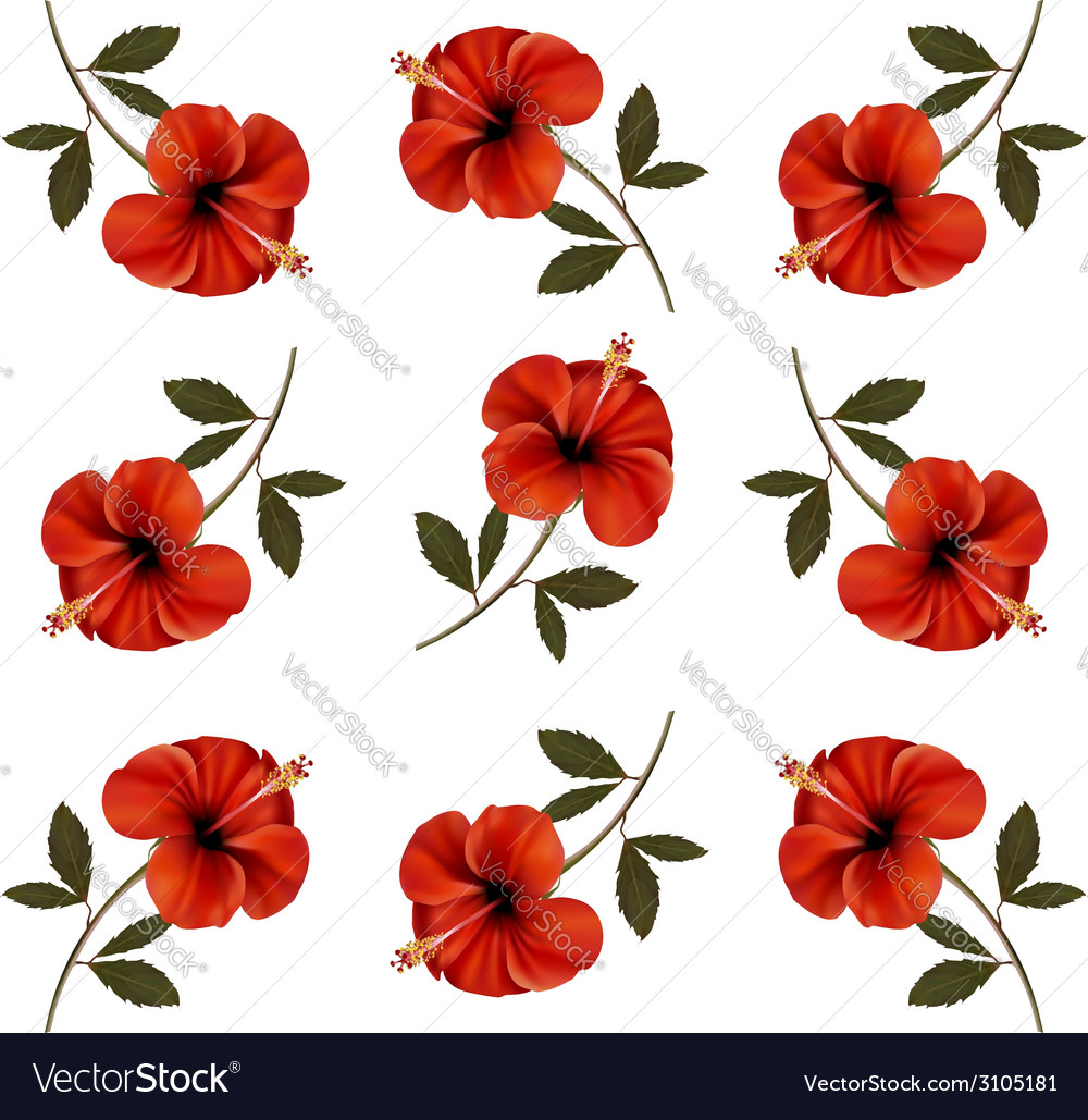 Pattern of beautiful red flowers