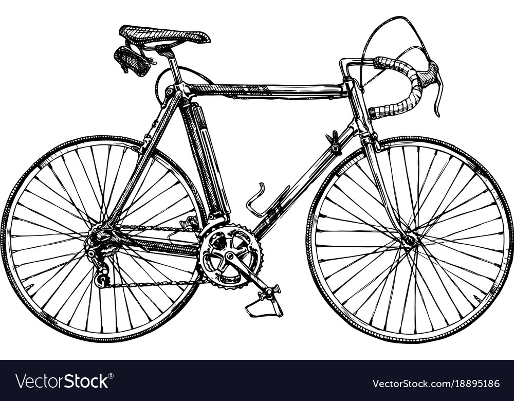 Racing bicycle vector image